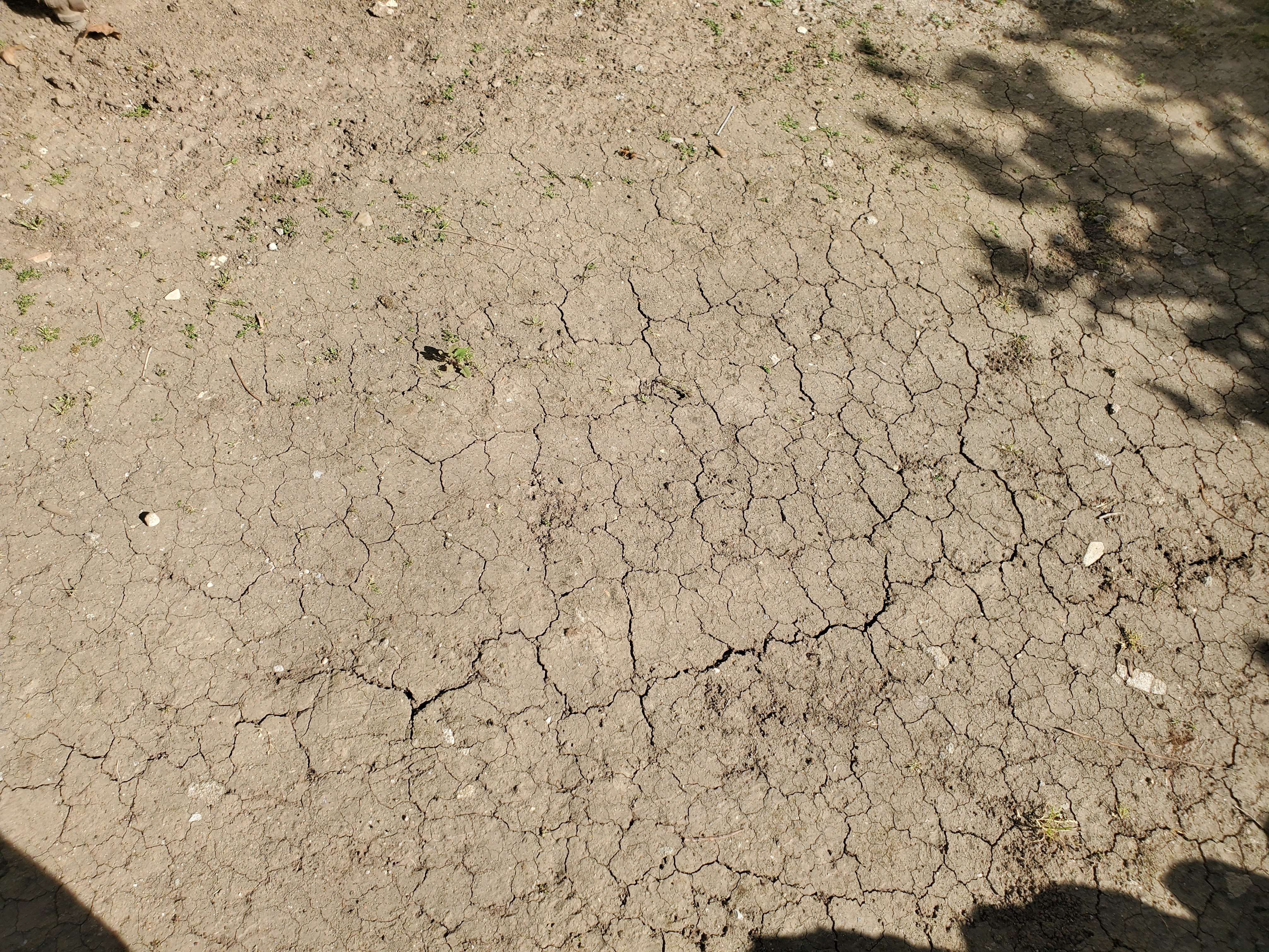 Why do clay soils become incompetent?